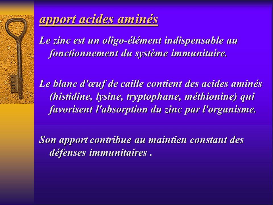 apport acides aminés Le zinc est un oligo-élément indispensable au fonctionnement du système immunitaire. Le blanc d'œuf de caille contient des acides