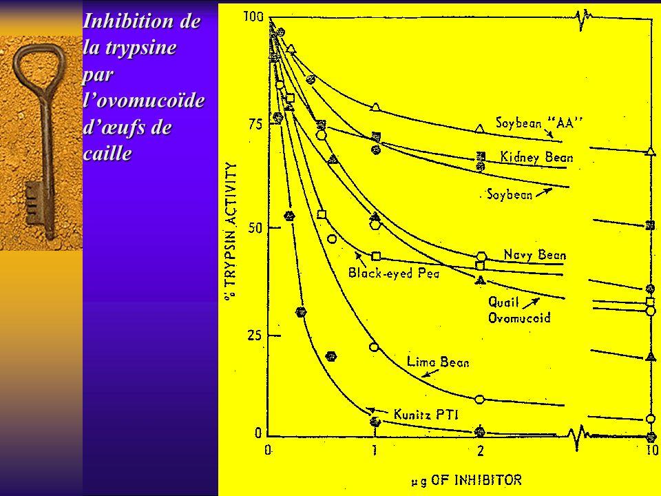 Inhibition de la trypsine parlovomucoïde dœufs de caille