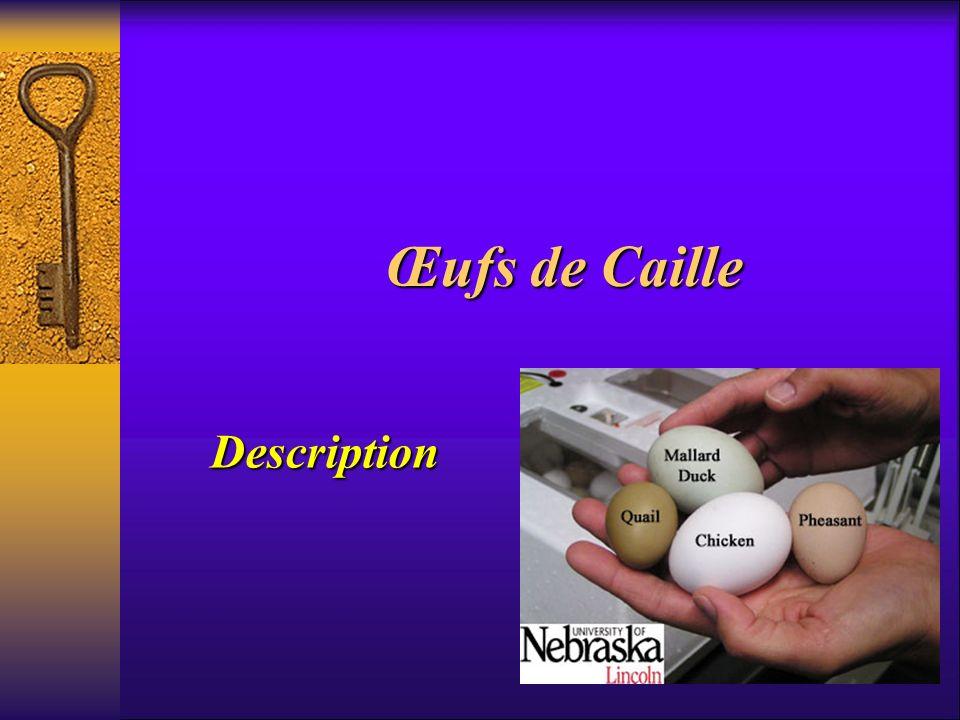 Description Une caille adulte pèse environ 120 grammes et les oeufs en moyenne 10 grammes : il faut l équivalent de 5 œufs de caille pour un œuf de poule.