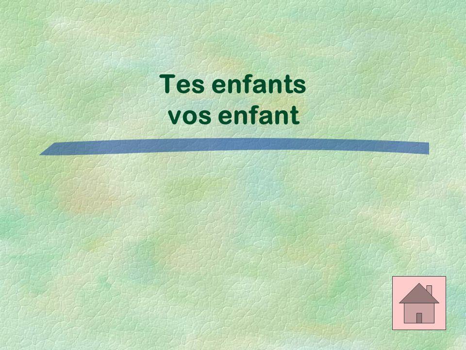Les adjectifs possessifs $300 Translate: Your children