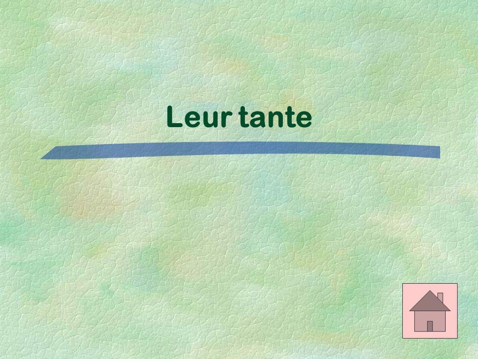 Les adjectifs possessifs $400 Translate: Their aunt