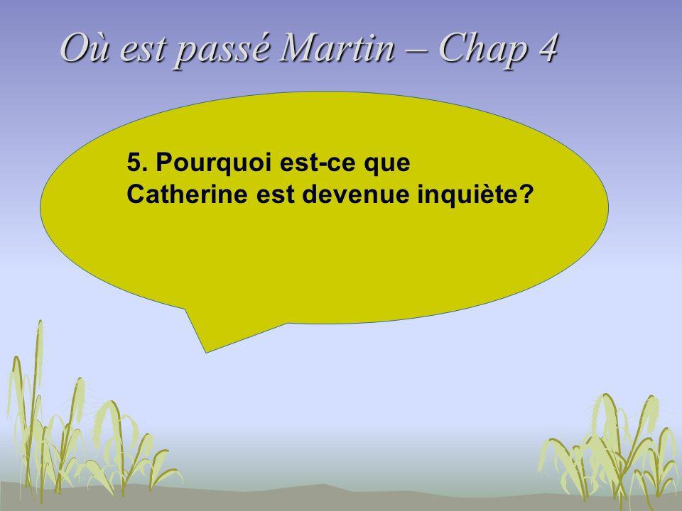 Où est passé Martin – Chap 4 5. Pourquoi est-ce que Catherine est devenue inquiète?