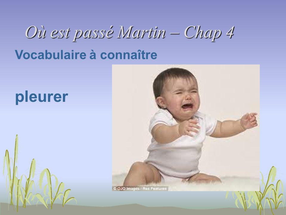 Où est passé Martin – Chap 4 Vocabulaire à connaître pleurer