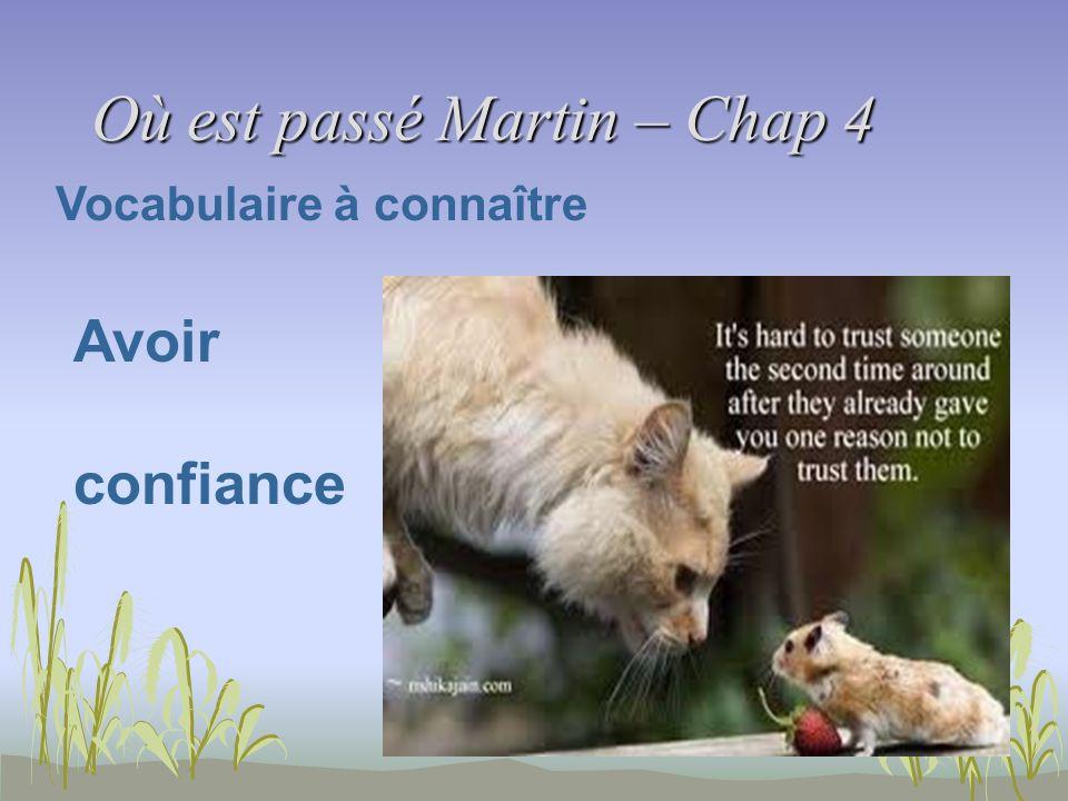 Où est passé Martin – Chap 4 Vocabulaire à connaître Avoir confiance