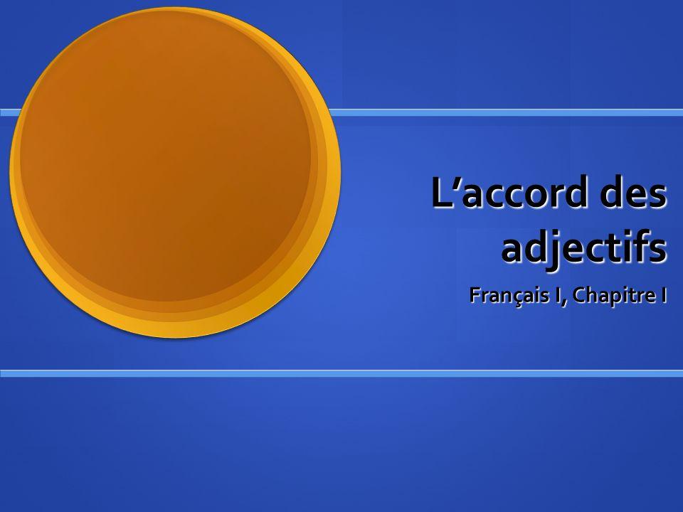 Laccord des adjectifs Français I, Chapitre I