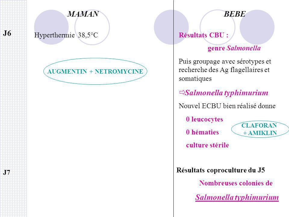 MAMANBEBE J7 Résultats coproculture du J5 Nombreuses colonies de Salmonella typhimurium J6 Résultats CBU : genre Salmonella Puis groupage avec sérotyp