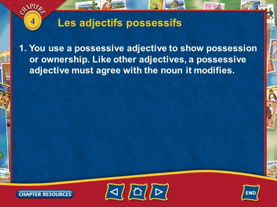 4 Les adjectifs possessifs 2.