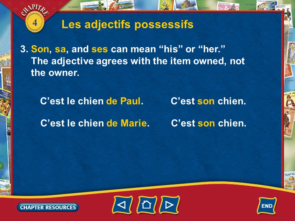 4 Les adjectifs possessifs 3. Son, sa, and ses can mean his or her. The adjective agrees with the item owned, not the owner. Cest le chien de Paul. Ce