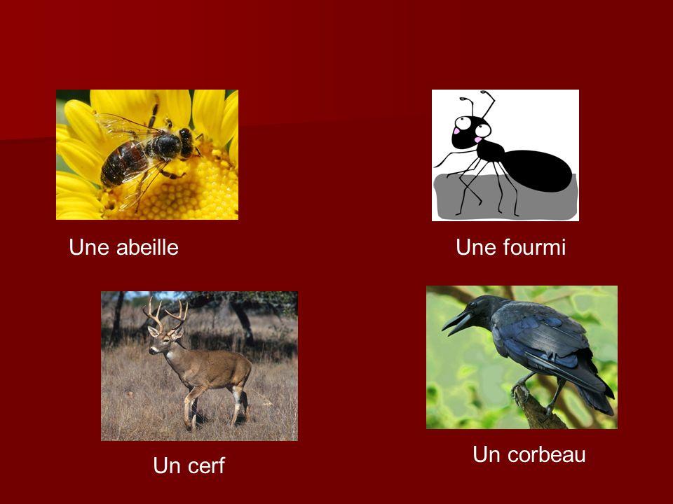 Une abeilleUne fourmi Un cerf Un corbeau