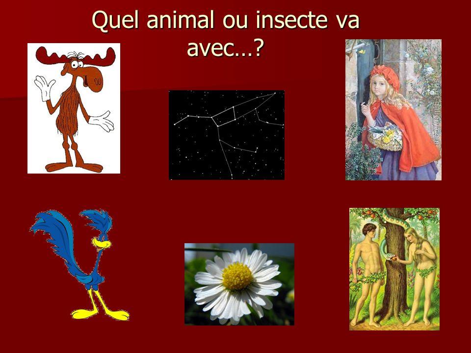 Quel animal ou insecte va avec…?