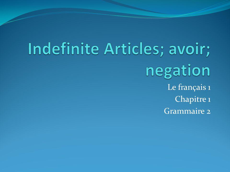 Le français 1 Chapitre 1 Grammaire 2