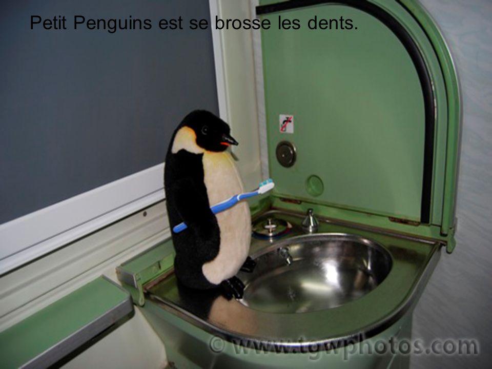 Petit Penguins est se brosse les dents.