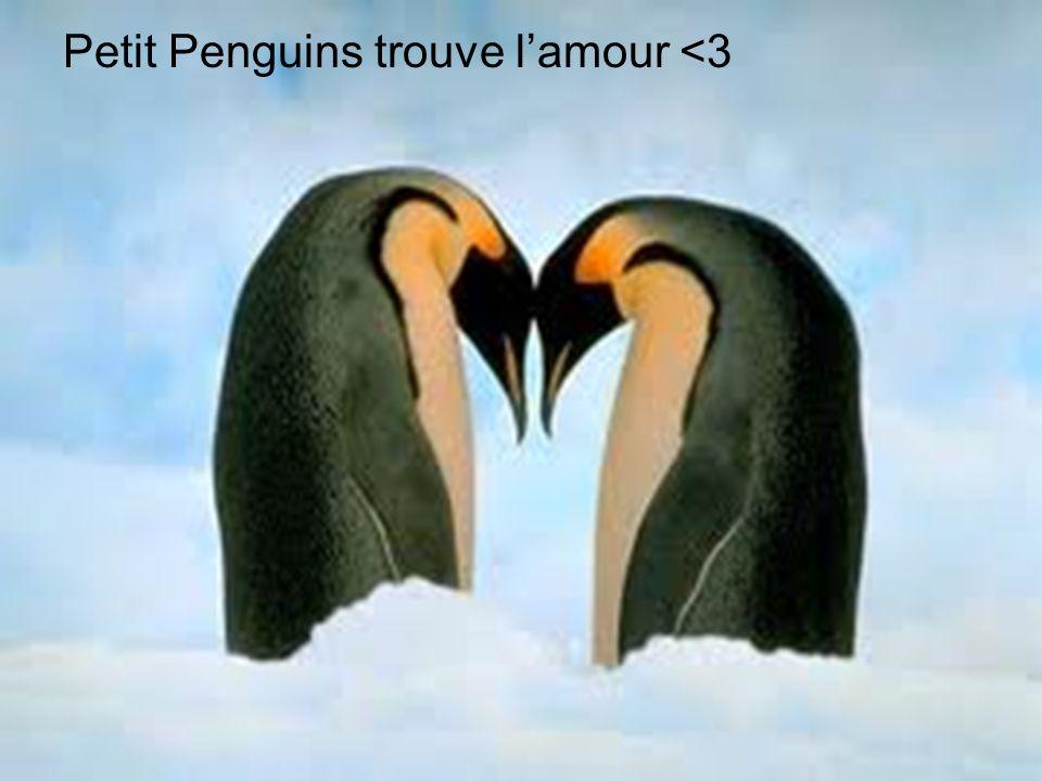 Petit Penguins se marie!