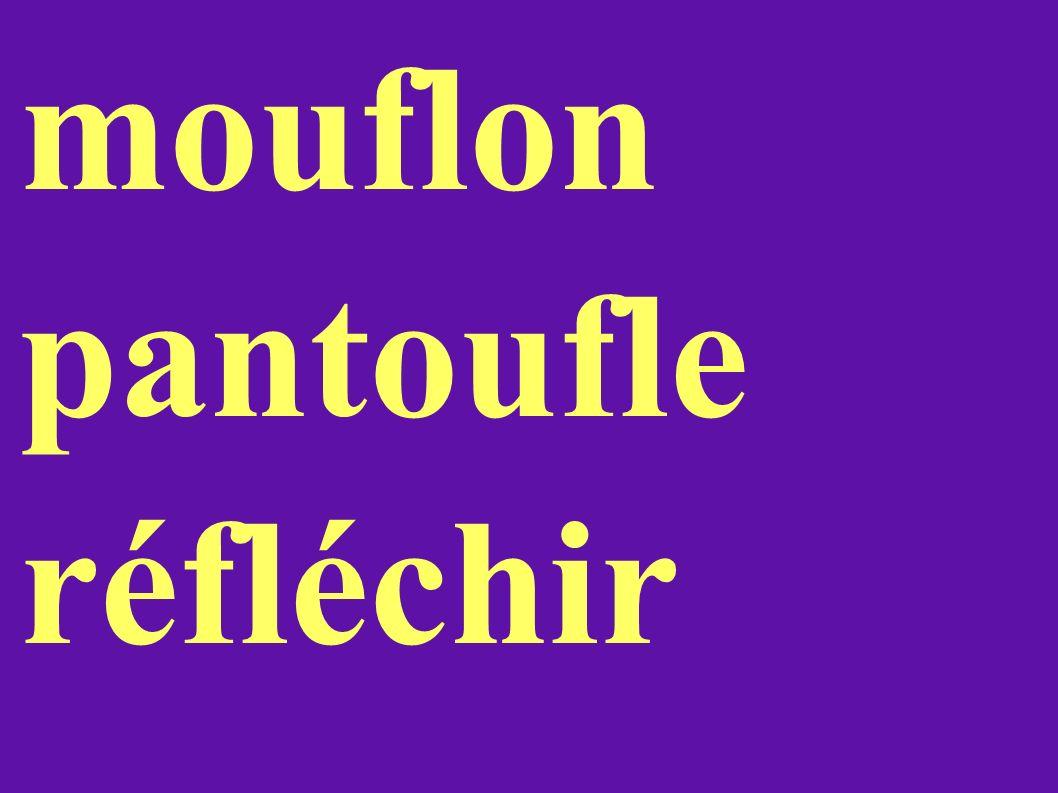 mouflon pantoufle réfléchir