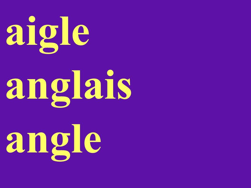 aigle anglais angle