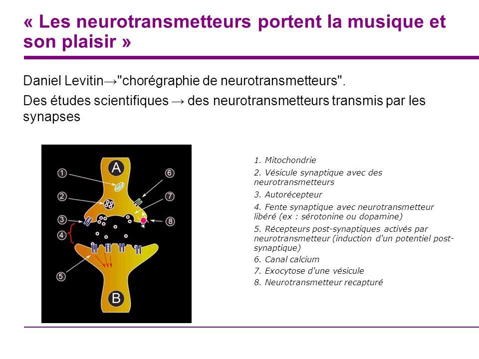 « Les neurotransmetteurs portent la musique et son plaisir » Daniel Levitin