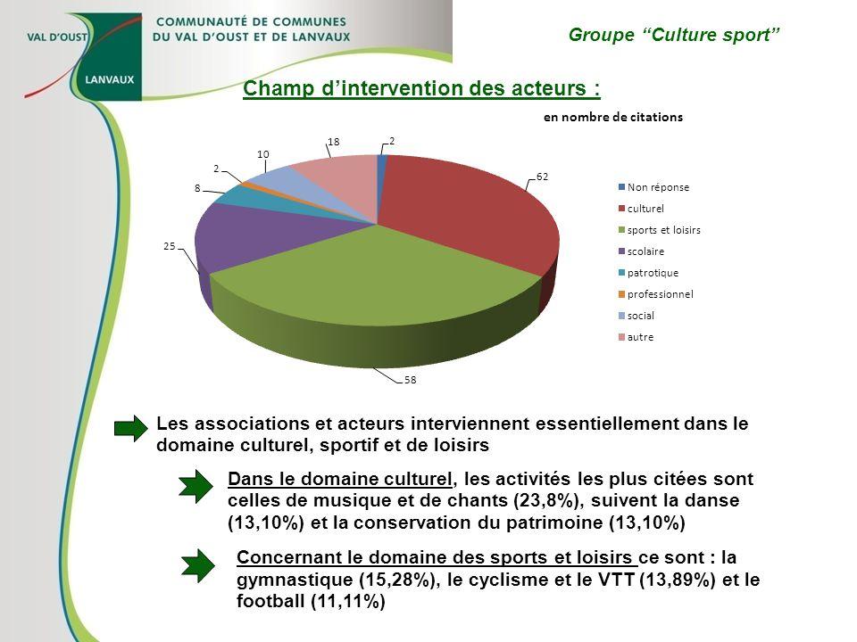 Groupe Culture sport Les associations et acteurs interviennent essentiellement dans le domaine culturel, sportif et de loisirs Champ dintervention des