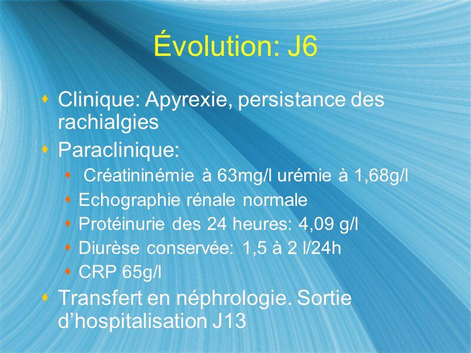 Évolution: J6 Clinique: Apyrexie, persistance des rachialgies Paraclinique: Créatininémie à 63mg/l urémie à 1,68g/l Echographie rénale normale Protéin