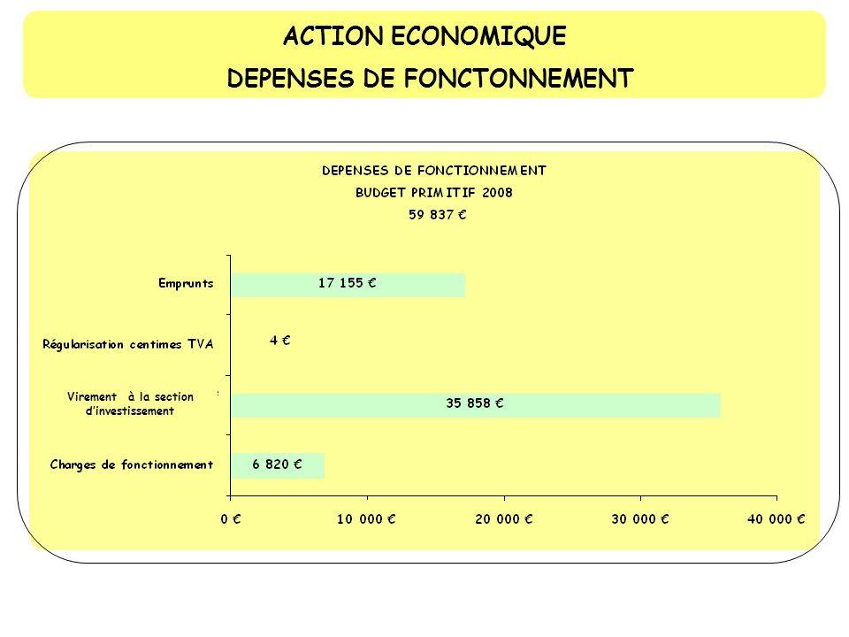 ACTION ECONOMIQUE RECETTES DE FONCTIONNEMENT