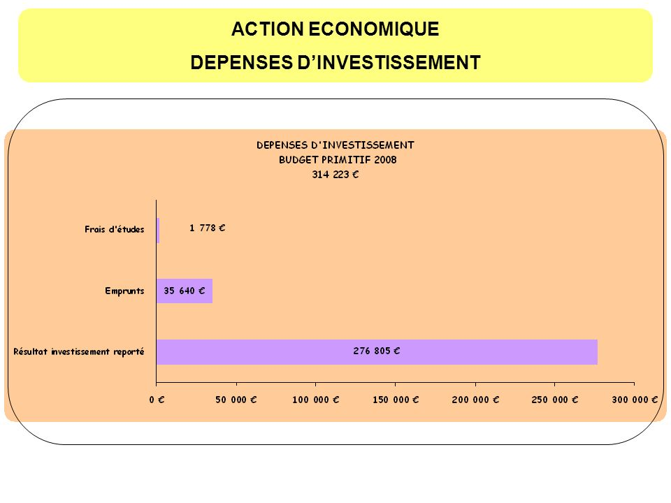 ACTION ECONOMIQUE DEPENSES DINVESTISSEMENT