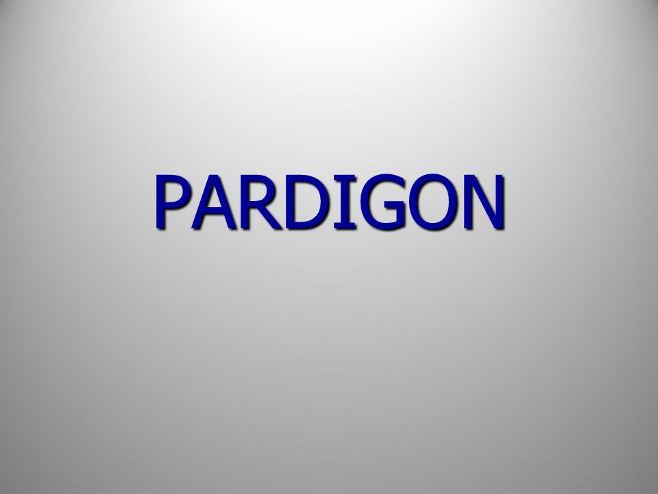 PARDIGON