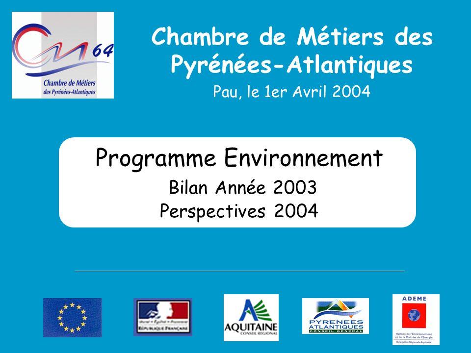Programme Environnement Bilan Année 2003 Perspectives 2004 Chambre de Métiers des Pyrénées-Atlantiques Pau, le 1er Avril 2004