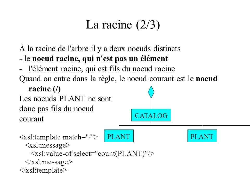 La racine (2/3) À la racine de l'arbre il y a deux noeuds distincts - le noeud racine, qui n'est pas un élément -l'élément racine, qui est fils du noe
