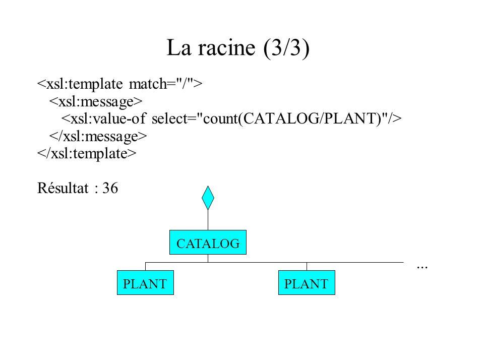 La racine (3/3) Résultat : 36 CATALOG PLANT...