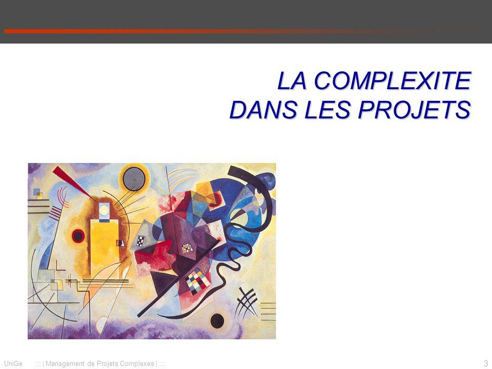 3 UniGe :::   Management de Projets Complexes   ::: LA COMPLEXITE DANS LES PROJETS