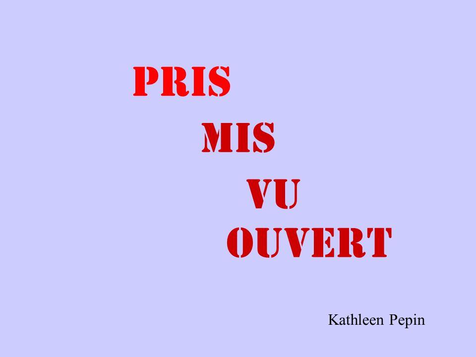 Loiseau A _______________ des chips.. PRIS MIS ~ OUVERT~ PRIS ~ VU