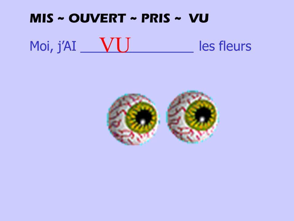 Moi, jAI ________________ les fleurs VU MIS ~ OUVERT ~ PRIS ~ VU