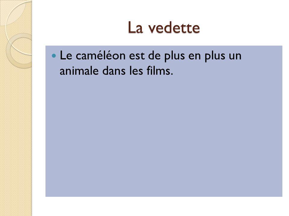 La vedette Le caméléon est de plus en plus un animale dans les films.