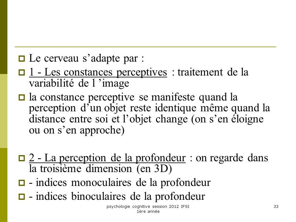 psychologie cognitive session 2012 IFSI 1ère année 33 Le cerveau sadapte par : 1 - Les constances perceptives : traitement de la variabilité de l imag