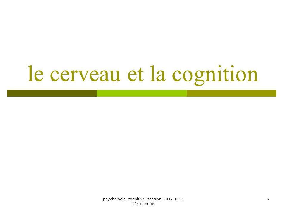 psychologie cognitive session 2012 IFSI 1ère année 6 le cerveau et la cognition