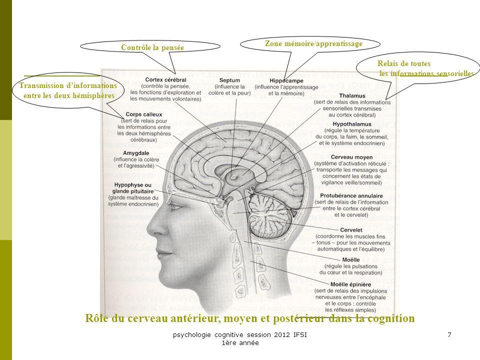psychologie cognitive session 2012 IFSI 1ère année 7 Zone mémoire/apprentissage Contrôle la pensée Transmission dinformations entre les deux hémisphèr