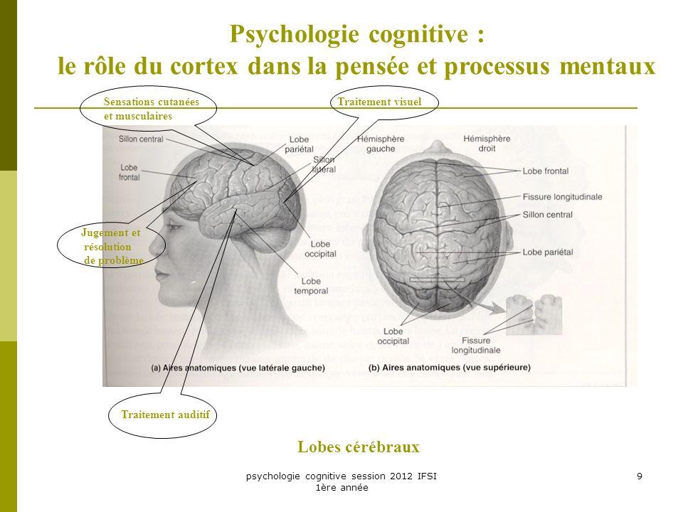 psychologie cognitive session 2012 IFSI 1ère année 9 Psychologie cognitive : le rôle du cortex dans la pensée et processus mentaux Lobes cérébraux Jug