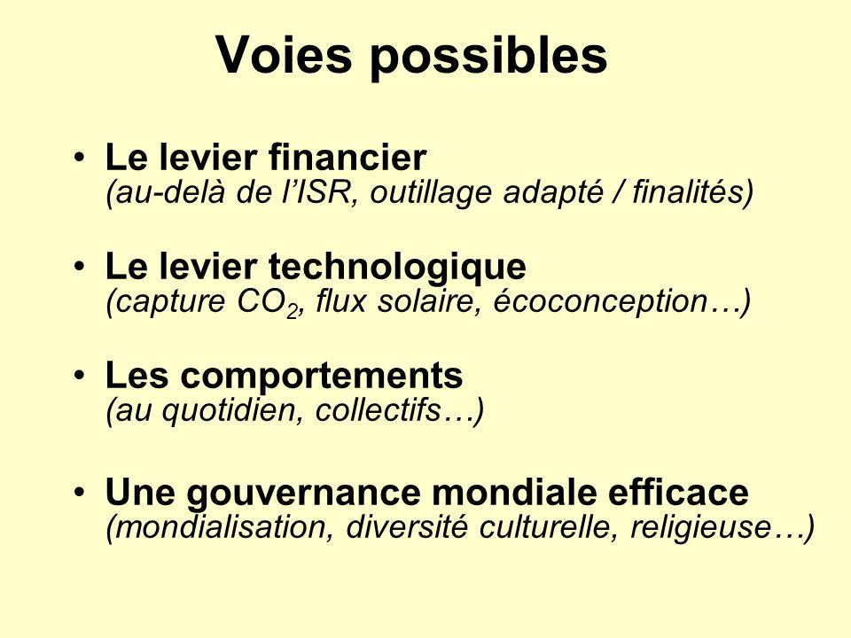 Voies possibles Le levier financier (au-delà de lISR, outillage adapté / finalités) Le levier technologique (capture CO 2, flux solaire, écoconception
