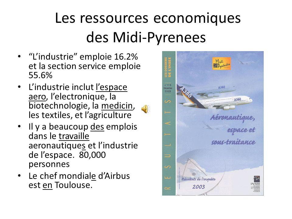 Les ressources economiques des Midi-Pyrenees Lindustrie emploie 16.2% et la section service emploie 55.6% Lindustrie inclut lespace aero, lelectronique, la biotechnologie, la medicin, les textiles, et lagriculture Il y a beaucoup des emplois dans le travaille aeronautiques et lindustrie de lespace.
