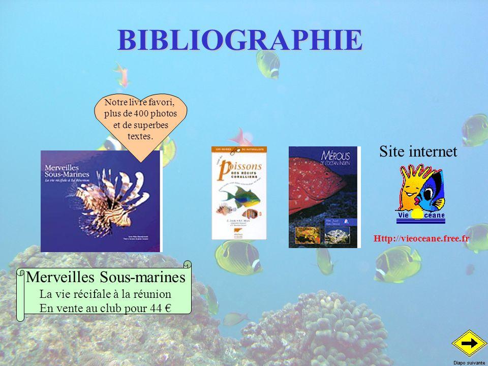 BIBLIOGRAPHIE Notre livre favori, plus de 400 photos et de superbes textes. Merveilles Sous-marines La vie récifale à la réunion En vente au club pour