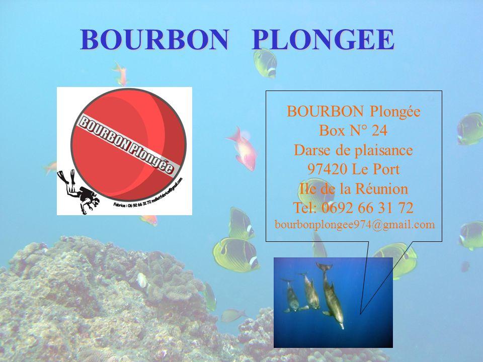 BOURBON PLONGEE BOURBON Plongée Box N° 24 Darse de plaisance 97420 Le Port Ile de la Réunion Tel: 0692 66 31 72 bourbonplongee974@gmail.com