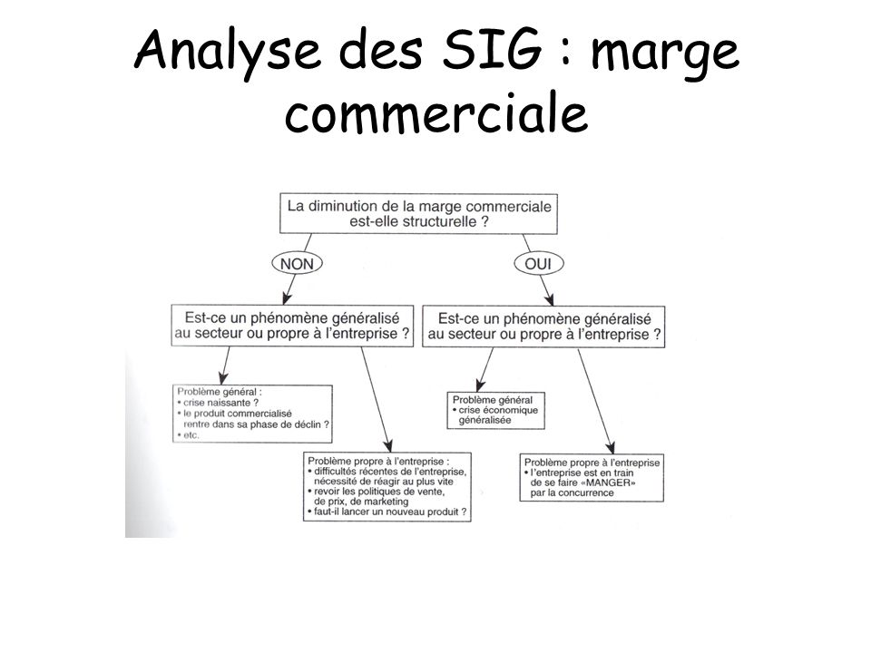 Analyse des SIG : marge commerciale