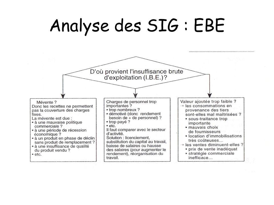 Analyse des SIG : EBE