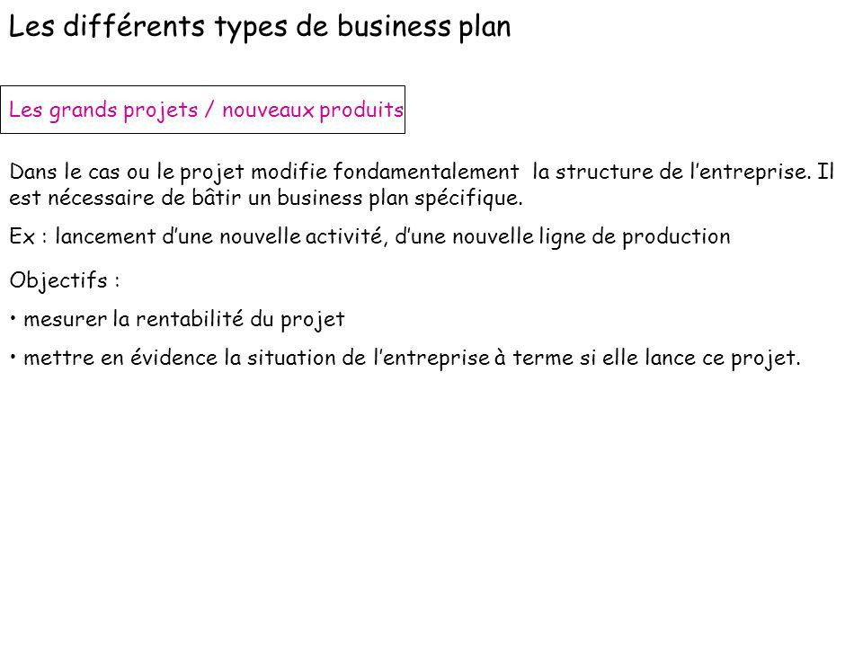 Les grands projets / nouveaux produits Dans le cas ou le projet modifie fondamentalement la structure de lentreprise. Il est nécessaire de bâtir un bu
