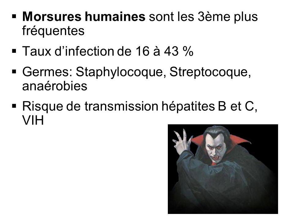 Morsures humaines sont les 3ème plus fréquentes Taux dinfection de 16 à 43 % Germes: Staphylocoque, Streptocoque, anaérobies Risque de transmission hé
