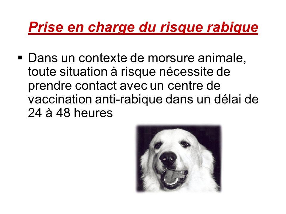 Prise en charge du risque rabique Dans un contexte de morsure animale, toute situation à risque nécessite de prendre contact avec un centre de vaccina