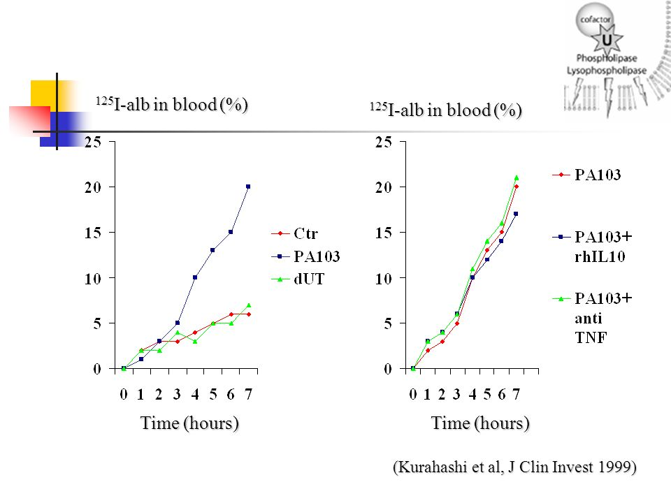 Time (hours) 125 I-alb in blood (%) (Kurahashi et al, J Clin Invest 1999)