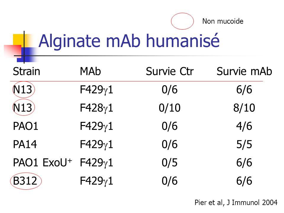 Alginate mAb humanisé StrainMAbSurvie CtrSurvie mAb N13 F429 1 0/66/6 N13 F428 1 0/108/10 PAO1 F429 1 0/64/6 PA14 F429 1 0/65/5 PAO1 ExoU + F429 1 0/5