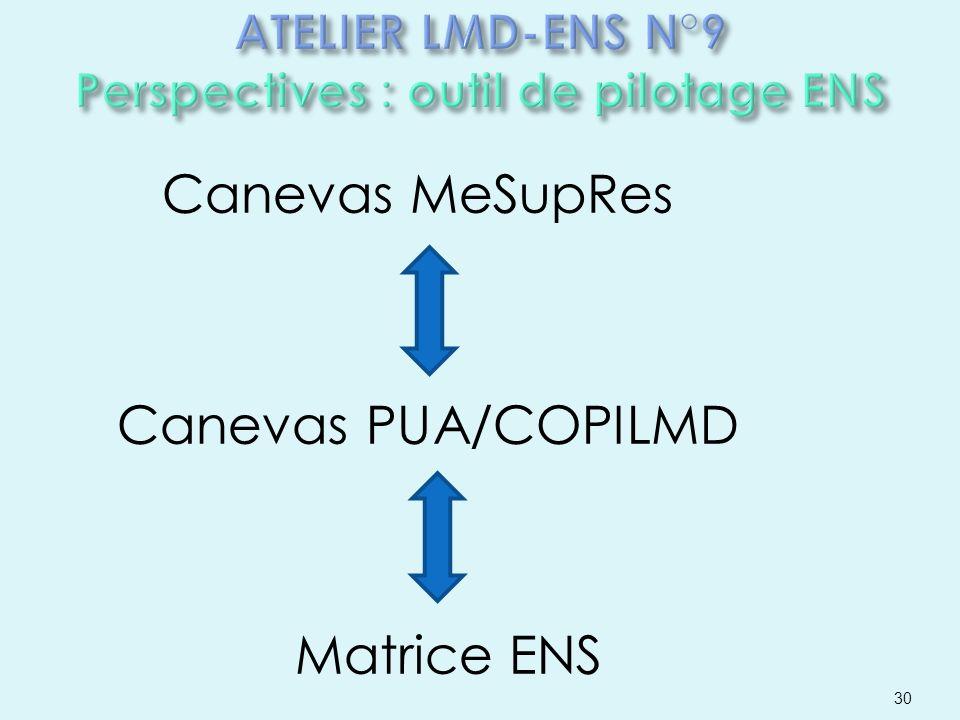 Canevas MeSupRes Canevas PUA/COPILMD Matrice ENS 30