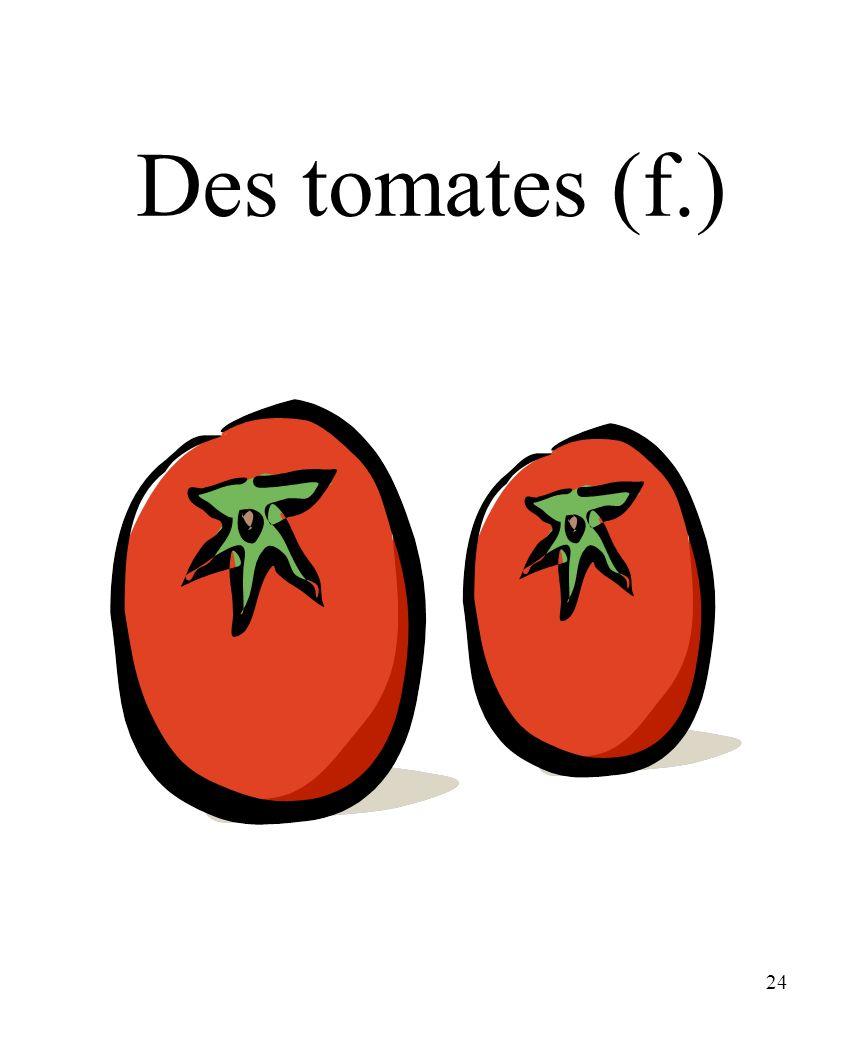 24 Des tomates (f.)