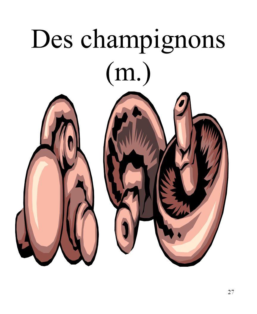 27 Des champignons (m.)